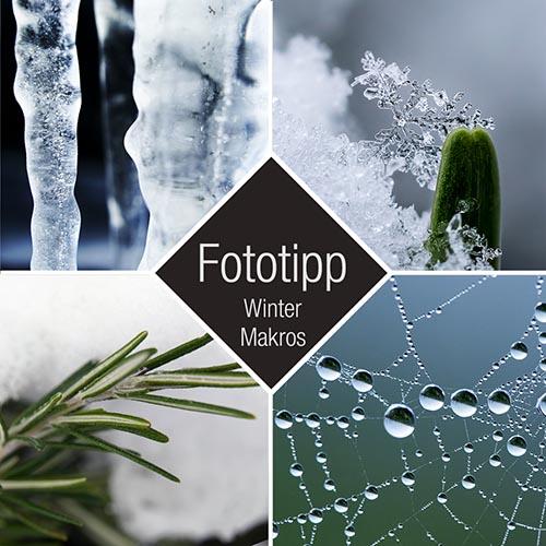 Fototipp Winter-Makros